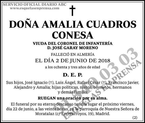 Amalia Cuadros Conesa
